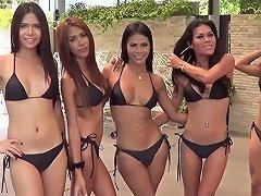 Ladyboys Pattaya Thailand